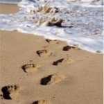 photo of footprints in sand leading to water's edge